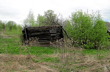 д.Ватолы. Руины дома А.Ф.Селиванова. 2015 г.